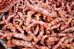Turmeric root Stock Photo
