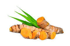 Turmeric root with green leaves isolated on white. Background royalty free stock image
