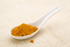 Turmeric root powder Stock Photography