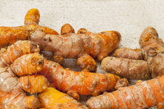 Turmeric root Royalty Free Stock Photos