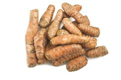 Turmeric root and some slices royalty free stock photography