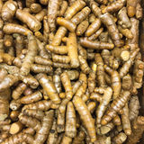 Turmeric Roots Stock Photography