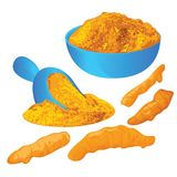 Turmeric roots and powder in a bowl on a white background. Vector illustration Royalty Free Stock Photos