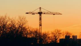 Turmkran, der an Baub?umen ohne die Bl?tter erzittern im Wind, im Sonnenaufgang oder im Sonnenuntergang arbeitet stock video footage