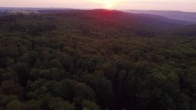 A turn around over Forest in Evening Sunlight. A forest filmed above the earth with a round turn at sunset stock video footage