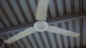 Turn of ceiling fan in the gym. static shot. Ceiling fan in the sport gym stock video footage