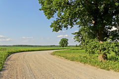 Turn of country road. Stock Image