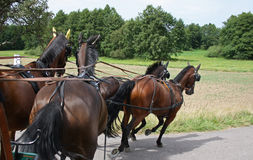 Turn with four horses Royalty Free Stock Photo