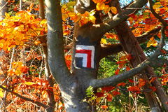 Turn left sign. White and red mark the trail on the mountain path , autumn colours Royalty Free Stock Image