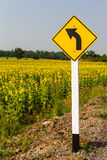 Turn left and sunflower Stock Images