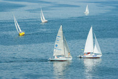 Turn of the sailing race on the Dnepr river Royalty Free Stock Images