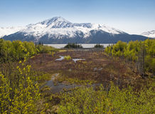 Turnagain Arm landscape Stock Images