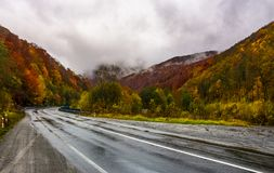 Turnaround on wet road through forest in autumn. Dangerous transportation scenery. miserable rainy weather in mountains Royalty Free Stock Photos
