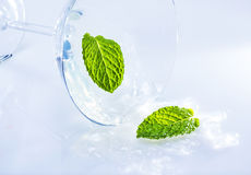Turned over coctail glass. Royalty Free Stock Photography