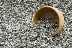 Turned over wooden bowl with sunflower seeds Stock Image