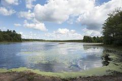 Turner Pond landscape Stock Image