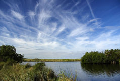Turner River. The scenic Turner River in Big Cypress National Preserve, Florida Everglades Stock Photos