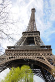 Turnera Eiffel i Paris Royaltyfria Bilder
