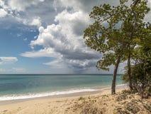 Turners Beach Antigua. One of the most beautiful beaches of the Antigua stock photo