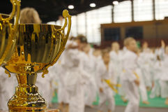 turniej karate. Fotografia Royalty Free