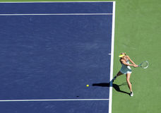 Maria Sharapova in Indian Wells 2013 Stockbild