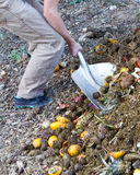 Turning compost. Gardener using a shovel to turn over garden compost from kitchen scraps Royalty Free Stock Photo
