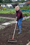 Turning the earth. Woman raking the ground in preparation for the winters vegetable planting season Stock Photo