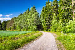 Turning empty rural road near green field, Finland Royalty Free Stock Images