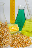 Turning food into fuel. Bio fuel concept with corn and chemicals Stock Photos