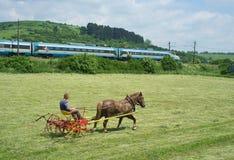 Turning hay on the farm Stock Photo