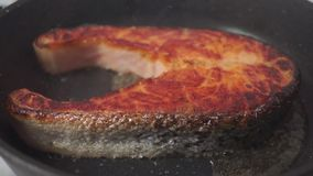 Turning over crusty salmon steak on a frying pan stock footage