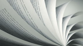 Turning Pages (Loop) Russian Book. Book pages with random Russian words / sentences stock footage
