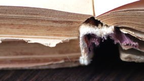 Turning the pages of an old book close-up. Pages faded old yellow book close up view.Turning the pages of an old book close-up stock video