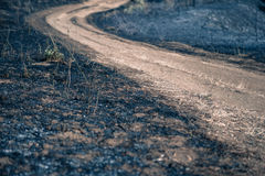 Turning path around scorched earth. Path between burned blackened fields, concept of making scorched earth. Selective focus, close up Royalty Free Stock Images