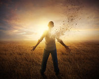 Turning to dust stock images