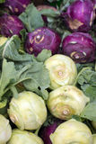 Turnip cabbage or kohlrabi at farmers market Stock Image