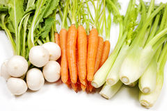 Turnip, carrot and celery from garden Royalty Free Stock Photography