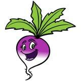 Turnip Cartoon Stock Photos