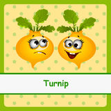 Turnip, funny characters on yellow background Stock Images