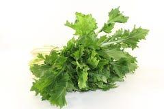 Turnip greens Stock Photos