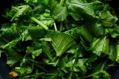 Free Turnip Greens Royalty Free Stock Photo - 62638585