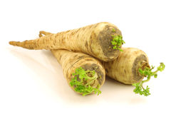 turnip rooted parsley stock photos