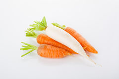 A turnip on the top of carrots heap Stock Photography