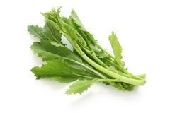 Turnip tops , cime di rapa , italian leaf vegetabl Royalty Free Stock Photo