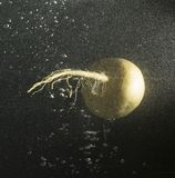 Turnip in water with splashes on a black background.  Royalty Free Stock Photos