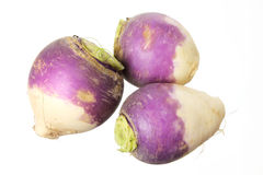 Turnips. On Isolated White Background Royalty Free Stock Images