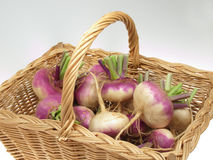 Turnips. Basket of vegetables from the garden Royalty Free Stock Images