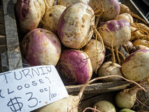 Turnips Stock Image