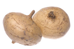 Turnips Isolated Royalty Free Stock Photos