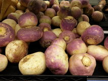 Turnips Royalty Free Stock Image